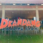 Travelschooling ke D'Kandang Amazing Farm Depok